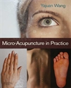 Picture of Microacupuncture in practice
