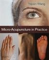 Εικόνα της Microacupuncture in practice